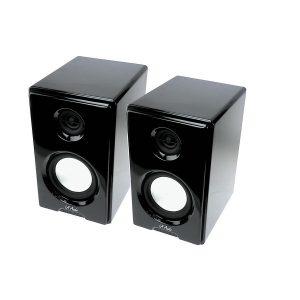 LA Audio - S-100 Speaker